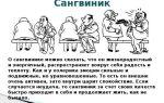 Конституциональные и факторные теории темперамента — справочник студента