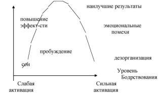 Психика и сознание — справочник студента