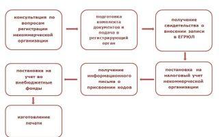 Цели деятельности коммерческих и некоммерческих организаций — справочник студента