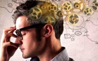 Развитие внимания — справочник студента