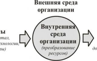 Ситуационный подход к управлению — справочник студента
