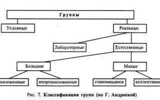 Малая группа и коллектив — справочник студента
