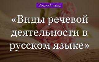 Основные виды речи — справочник студента