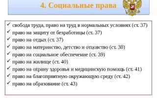 Основные виды конституционных прав и свобод — справочник студента