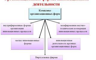 Особенности организационных форм инновационной деятельности — справочник студента