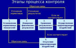 Понятие и этапы контроля — справочник студента