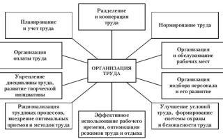 Разделение труда — справочник студента