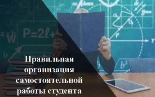 Принципы и критерии отбора учебного материала — справочник студента