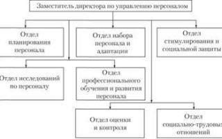 Параметры организационной роли — справочник студента