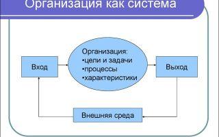 Организация как система — справочник студента