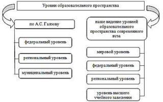 Функции и структура современной образовательной системы — справочник студента
