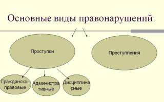 Понятие правонарушений и их классификация — справочник студента