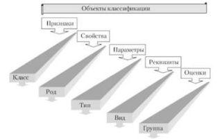 Классификация социальных и хозяйственных организаций — справочник студента