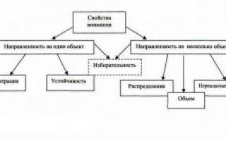 Характеристики свойств внимания — справочник студента