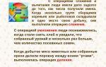 Кодирование числовой информации — справочник студента