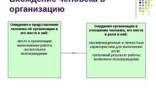 Обучение при вхождении в организацию — справочник студента