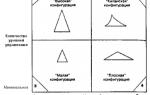 Иерархия в организации и ее звенность — справочник студента
