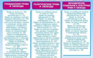 Конституционные права граждан россии — справочник студента