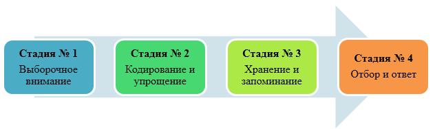 Восприятие человеком окружения - Справочник студента