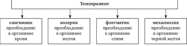 Темперамент. 4 типа темперамента - Справочник студента