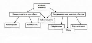 Характеристики свойств внимания - Справочник студента