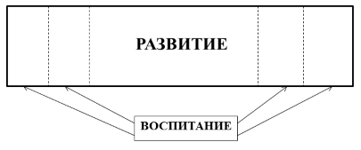 Взаимосвязь развития и воспитания - Справочник студента