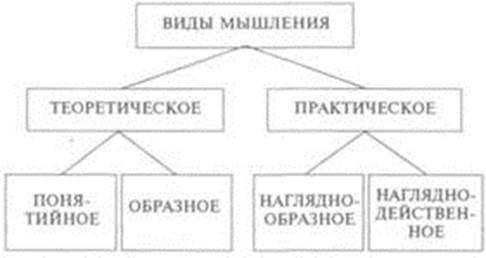 Диагностика творческого мышления - Справочник студента