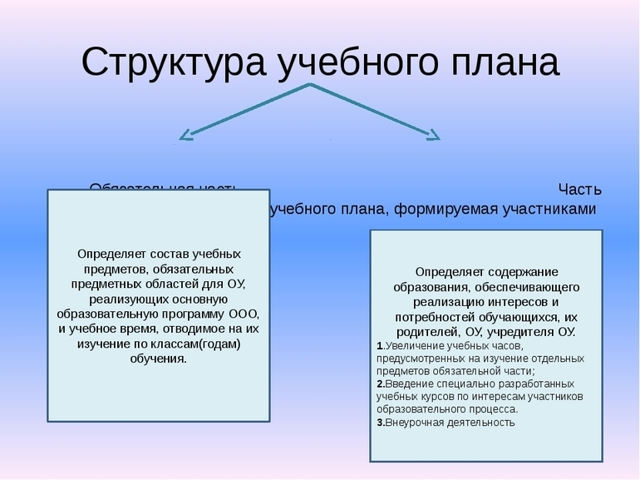 Учебный план: понятие, педагогические требования - Справочник студента