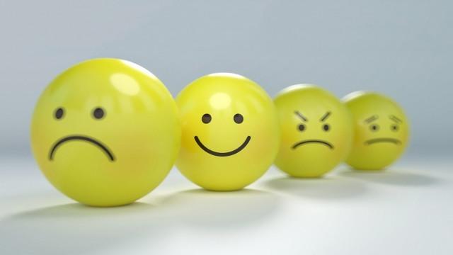 Развитие эмоций и их значение в жизни человека - Справочник студента