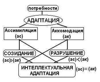 Когнитивная теория Ж. Пиаже - Справочник студента