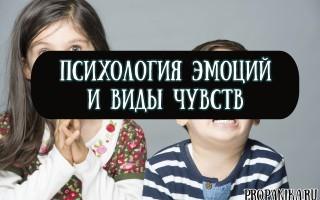 Невербальные проявления эмоций - Справочник студента