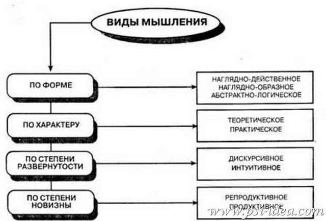 Различные подходы к исследованию мышления - Справочник студента