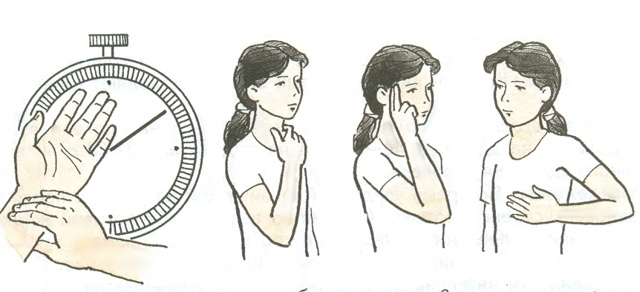 Метод самонаблюдения - Справочник студента