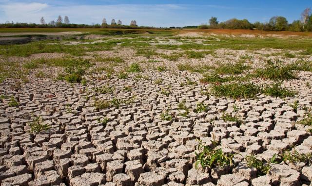 Экологические проблемы - Справочник студента