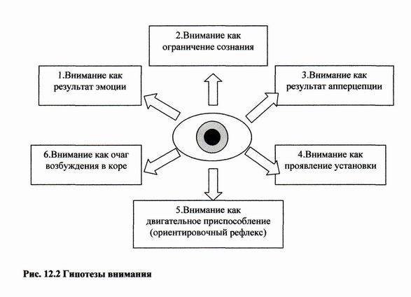 Основные виды и механизмы внимания - Справочник студента