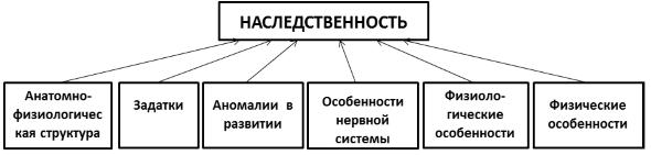 Ведущие факторы развития личности - Справочник студента