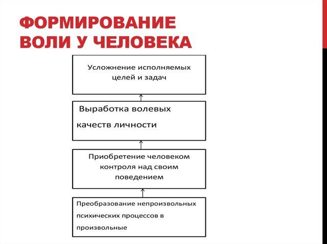 Черты личности и структура характера - Справочник студента