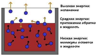 Испарение и конденсация - Справочник студента